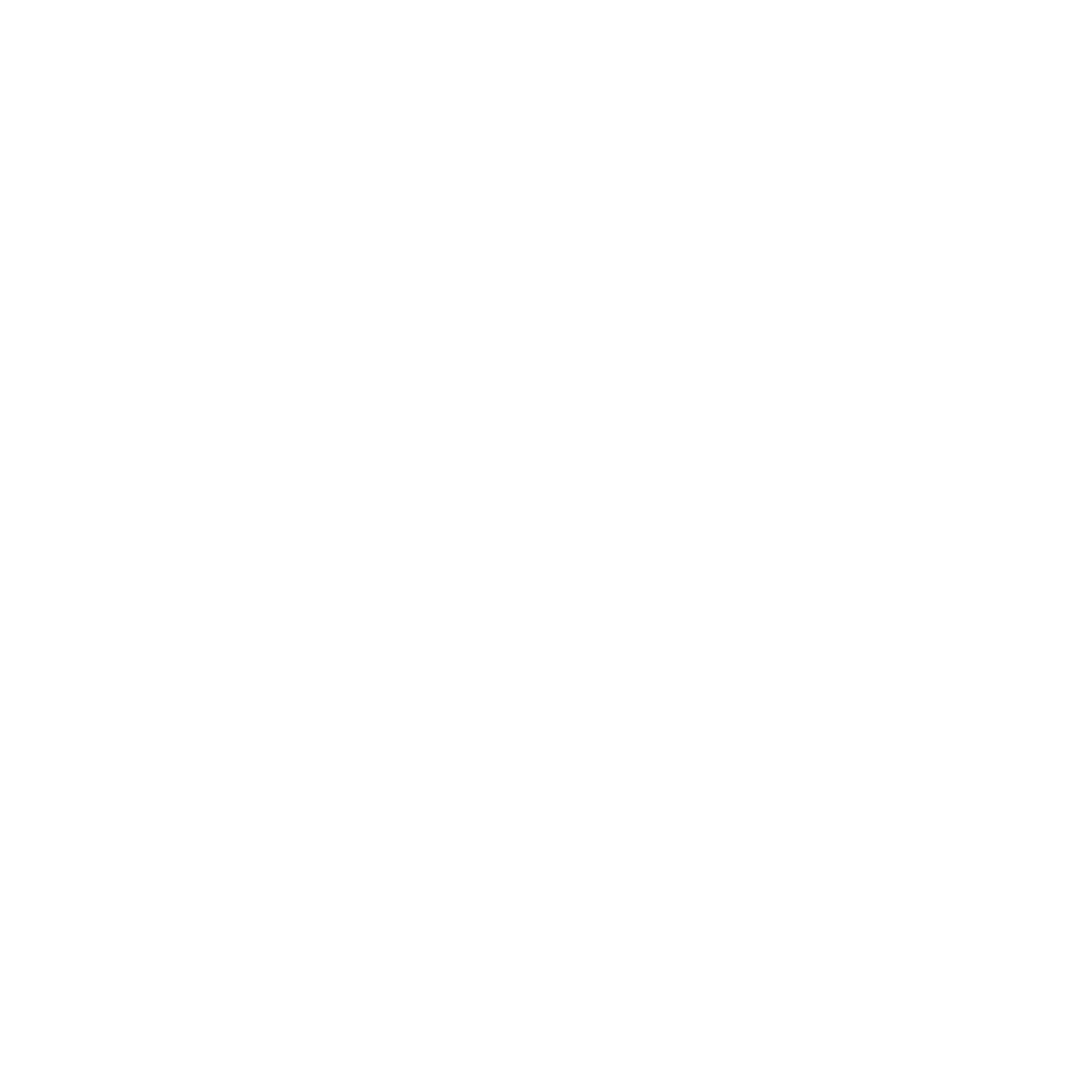 FP_Logo_only_white